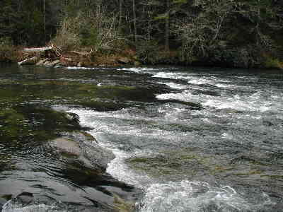 chattooga1