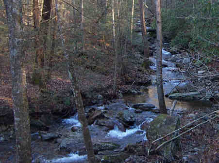Beech Creek